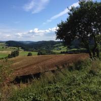 Cesta Daňkovice - Líšná.