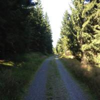 Cesta Malinská skála - Lisovská skála.