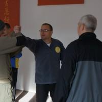 Principy aplikací v Yang Tai Chi