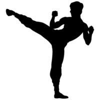 Kung-fu DNA